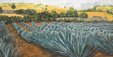 Agaves azules, 2002, oil on canvas 33.9 x 67.7 in